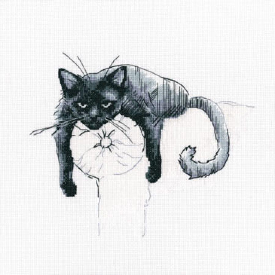 kissasohvalla-1cd7feea