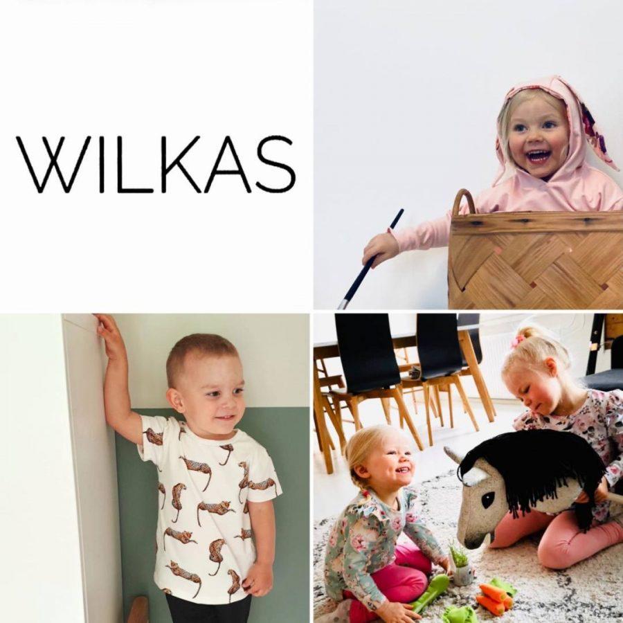 wilkas esittely-5b6716f3